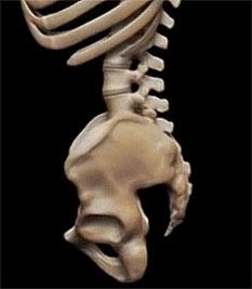 Болит низ живота слева отдает в спину ногу