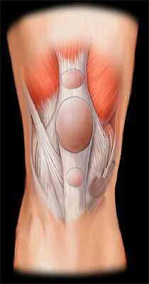 Куда обратится болит колено деф.артроз плечевого и ключично-акромиального сустава