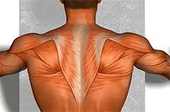 Защемление седалищного нерва позвоночника лечение