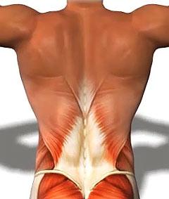 Сильная боль спина отдает в ногу лечение