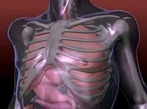 Физически упражнения при болях в спине